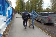 Обнародованы данные о числе погибших в ходе нападения на пермский вуз: Следствие и суд: Силовые структуры: Lenta.ru