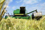 Россия отдаст миллион гектар Узбекистану: может получиться как с Аляской